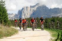 Bergradler in den Dolomiten