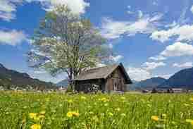 Tiroler Lech